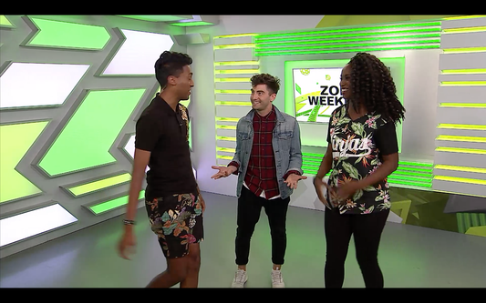 YTV the Zone Weekend Segment