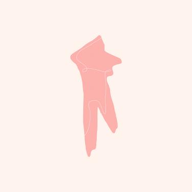 I'm Pink