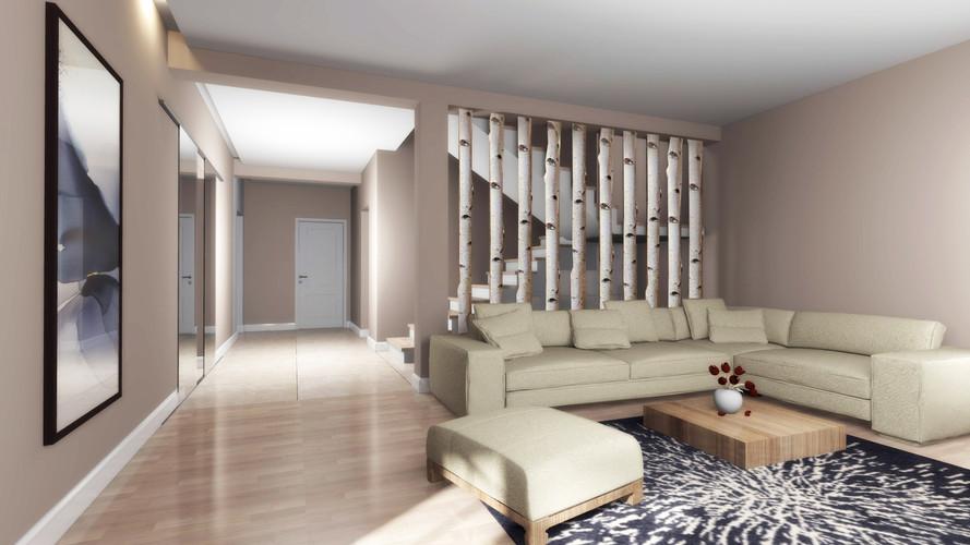 casa aradul nou