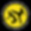 dzfc_Logo_klein.png