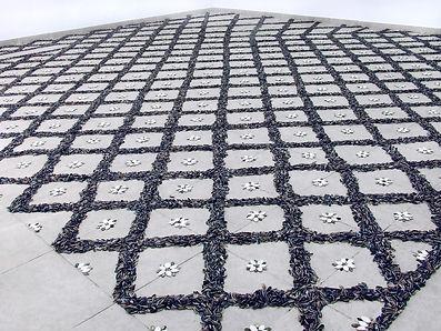 Seeds floor_1_Shahar Tuchner_icon.jpg