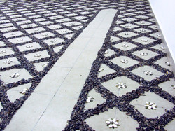 Seeds floor_3_Shahar Tuchner.jpg