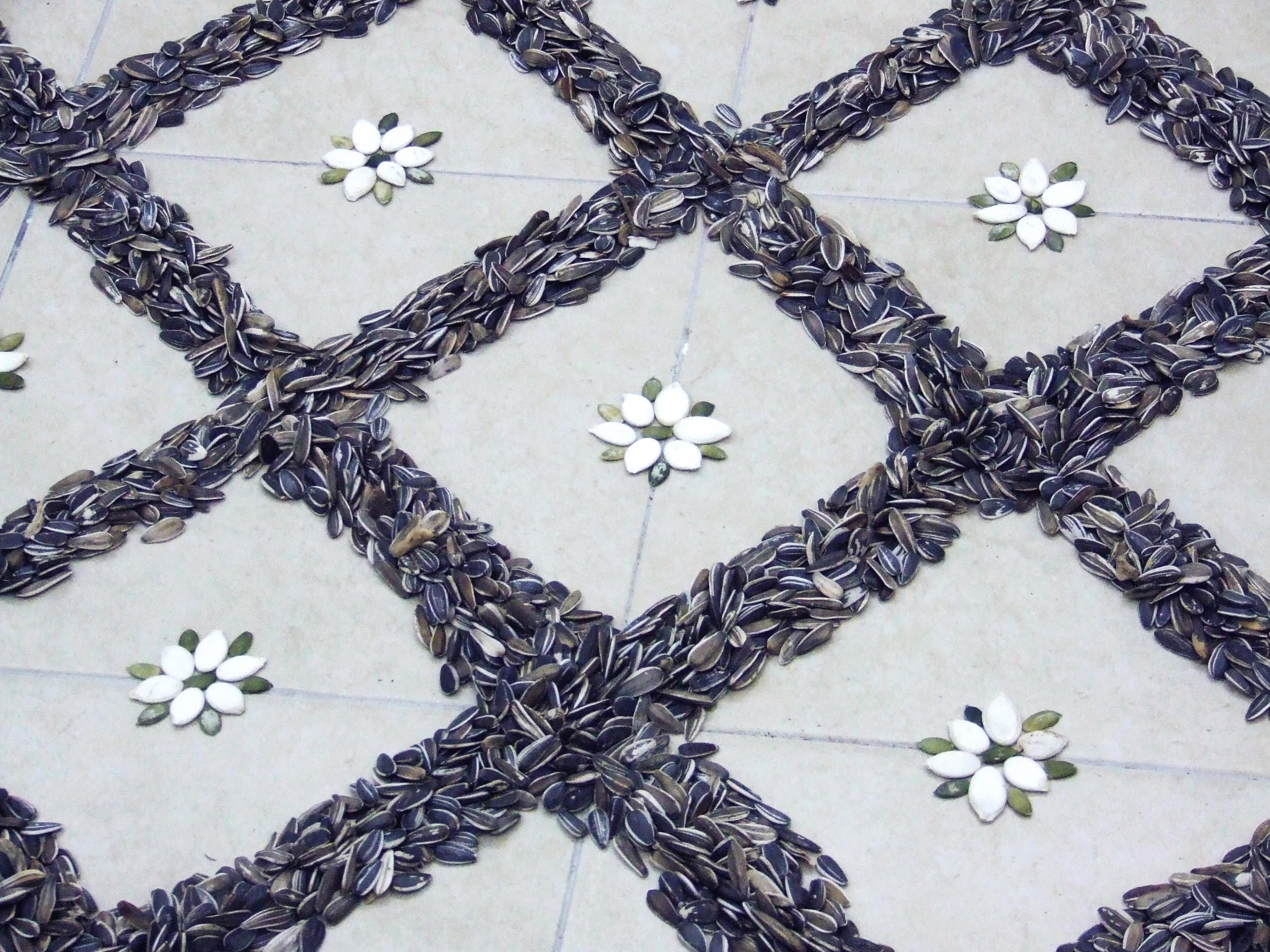 Seeds floor_6_Shahar Tuchner.jpg