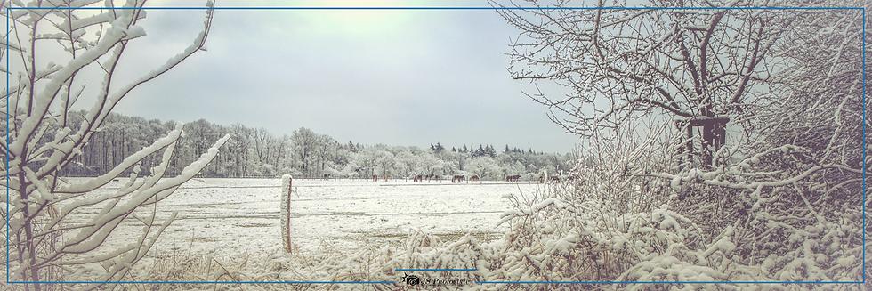 02_20210131_panorama_Koppel_Schnee.png