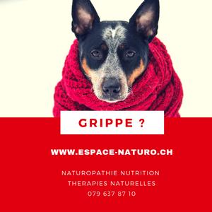 grippe espace-naturo.ch