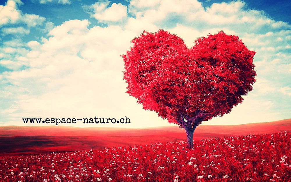 www.espace-naturo.ch allergies