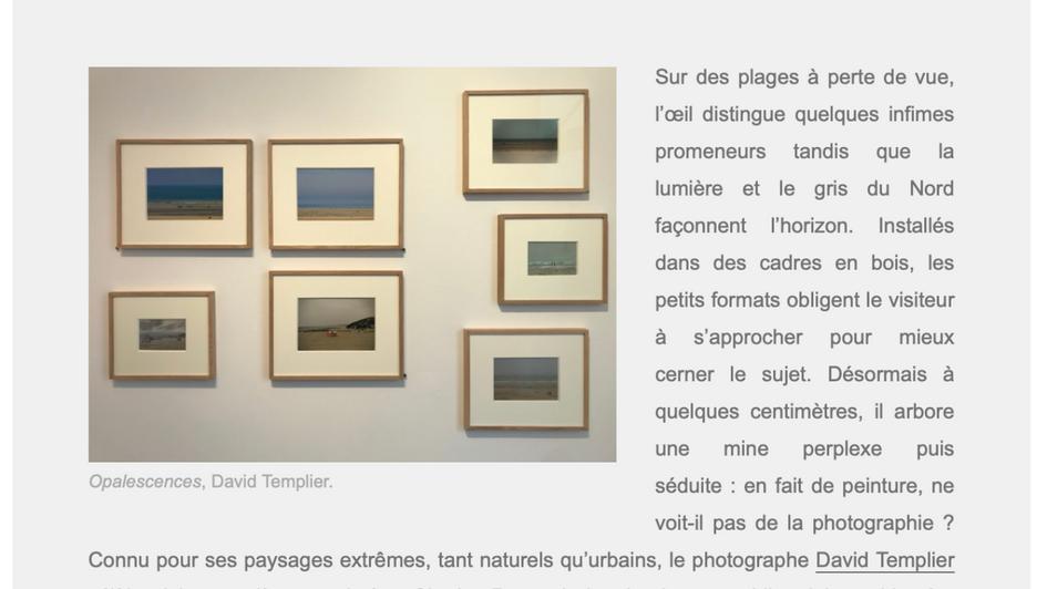Article Arts hebdo medias David Templier Opalescences
