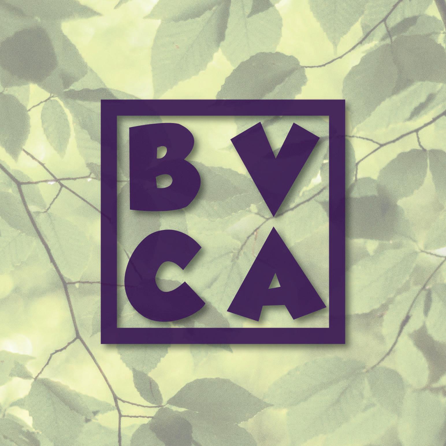 BVCA logo