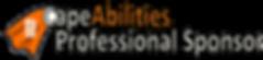 Professional Sponsor.png