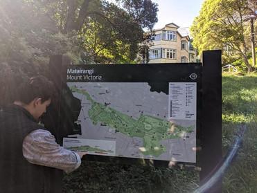 Mount Vic Trails
