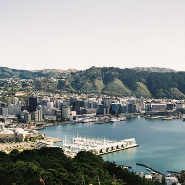 Mt Vic, Wellington