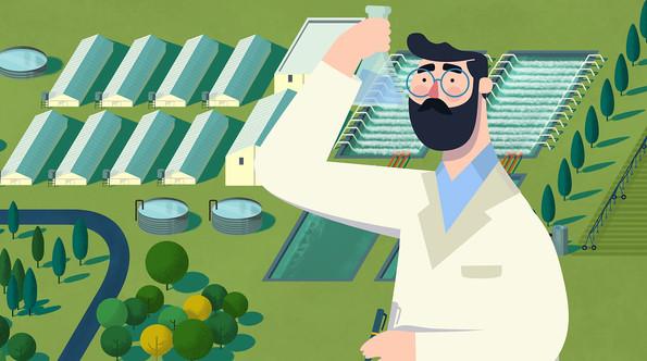 Agrosuper PT_13.jpg