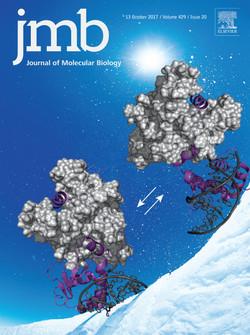 JMB Vol 429/20