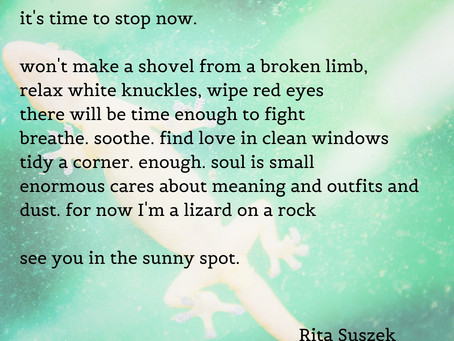 Day 30 of NaPoWriMo! It's Time To Stop