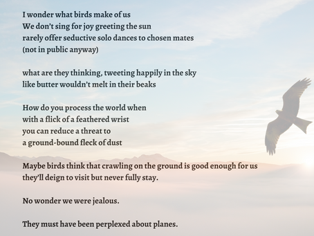 Day 16 of #NaPoWriMo: Birds
