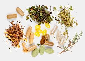 Phytothérapie: extraits secs de plantes, comprimés et gélules