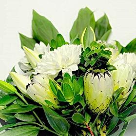 www.tealucawildflowers.co.jpg