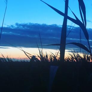 Sonnenuntergang am Neusiedlersee.