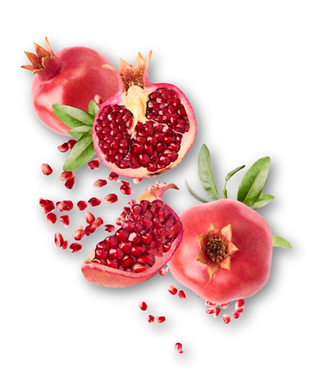 pomegranate (2).png
