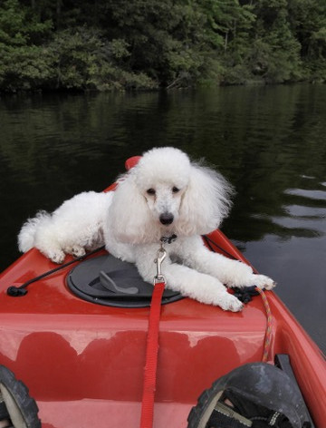 Kayaking with a friend