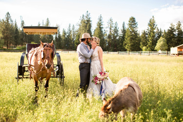 Montana Wedding Carriage // Bridal Bouquet