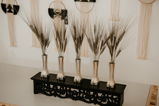 Dried Flower Collection // Wheatgrass