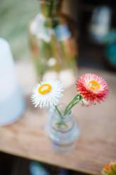 Montana Elopement Strawflower Bud Vase