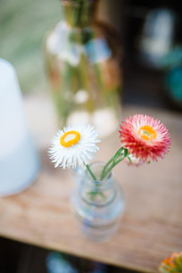 Montana Elopement Strawflower Bud Vase