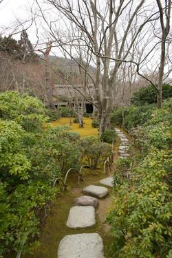 Kyoto path, 2014