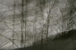 Savoie series, 2012