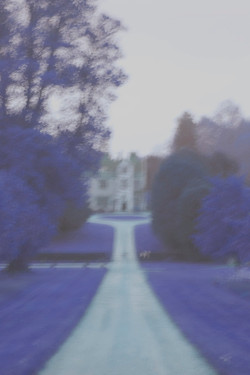 Chawton House revisited, 2013