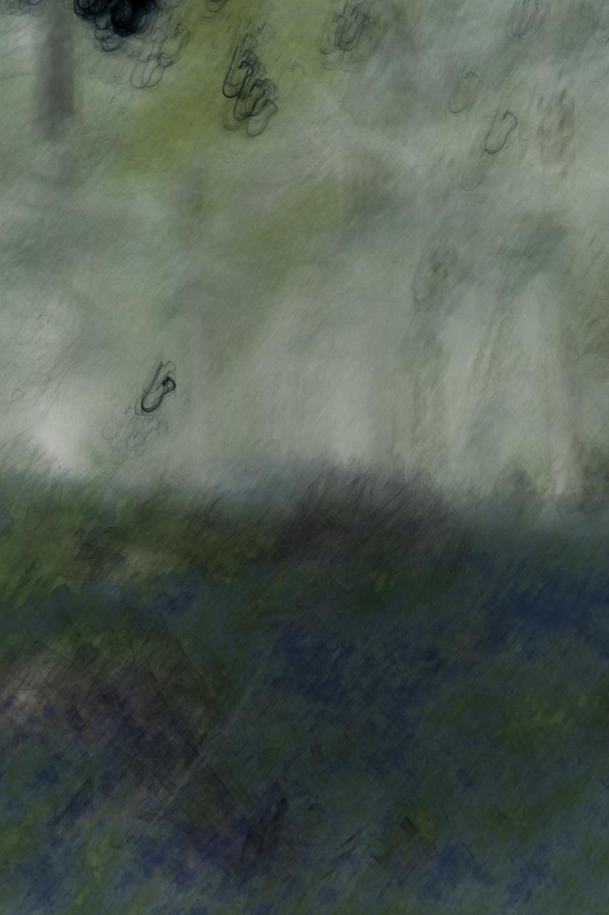 Bluebell blur, 2013