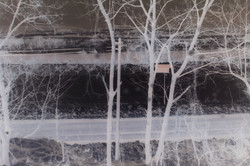 Nozawa roadside, 2014