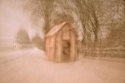 Pink hut, 2010