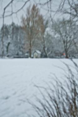 Hut in snow, 2010