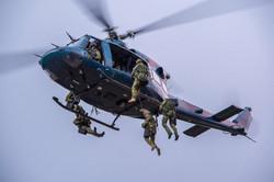 Voltigeurs, Forces canadiennes