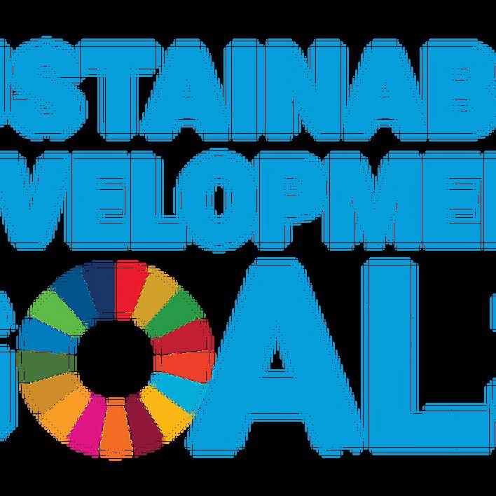 Art meets the Sustainable Development Goals