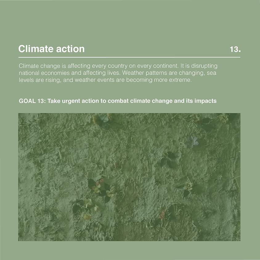 EXPO: Climate action - Ruth Devriendt