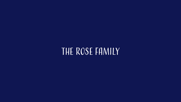 The Rose Family