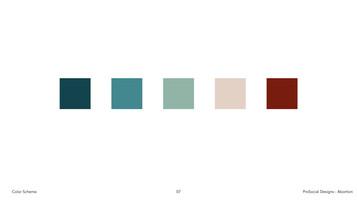 Abortion Color Scheme