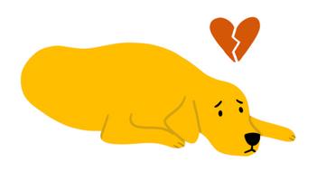 App Illustration Sad Dog