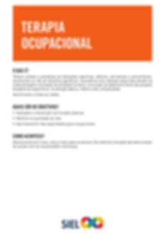 Terapia Ocupacional - Siel