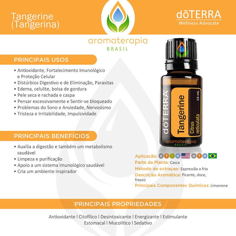 Tangerine-Usos (1).jpg