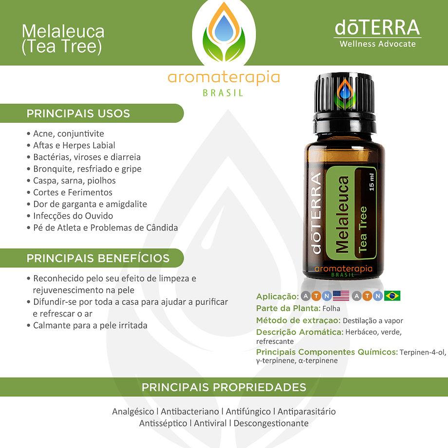 Melaleuca-Usos (1).jpg