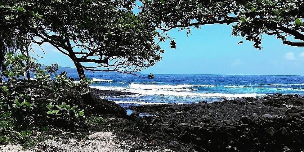 Onekahakaha Beach Day