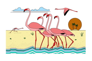 flamboyance of flamingos.tif