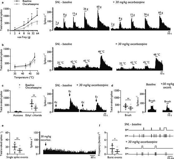 Oxcarbazepine inhibits stimulus‐evoked and spontaneous firing of thalamic WDR neurones in SNL rats.