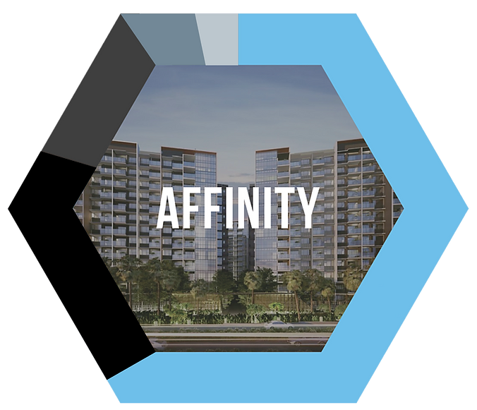 Affinity_Hexagon.png