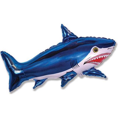 Шар акула