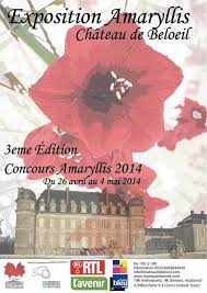 Expo Amaryllis Beloeil 2014